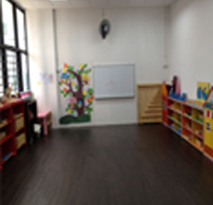 Mandarin Immersion Montessori Programmes